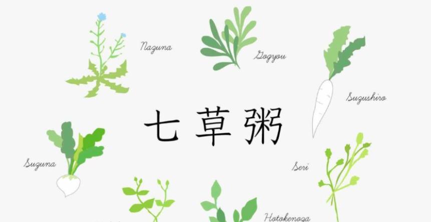 「医食同源と七草粥」 2つの調理法で違いを味わう!七草粥(漫画版)