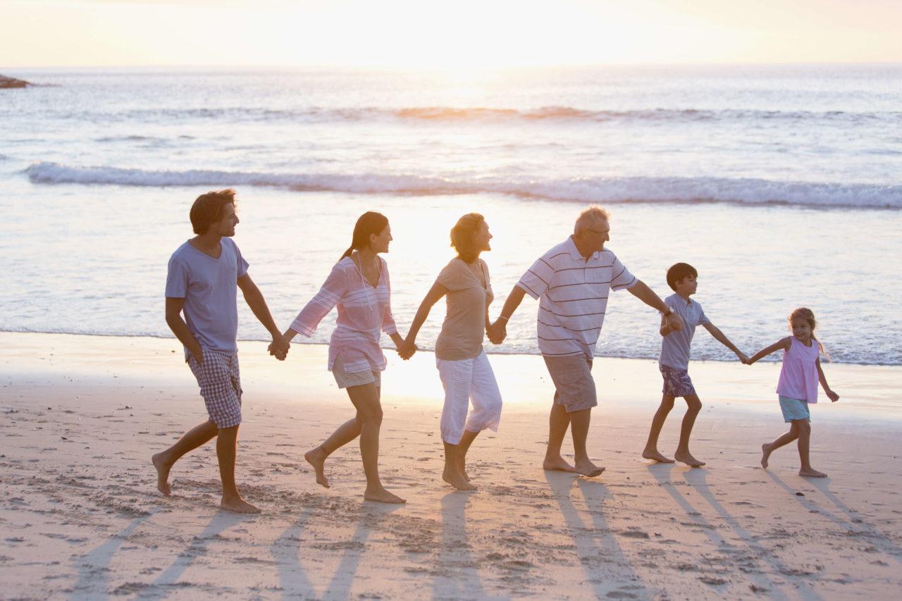 「老化の進化論 小さなメトセラが寿命観を変える」老化の先延ばし研究の幕開けとプロセスから見えてくるものとは